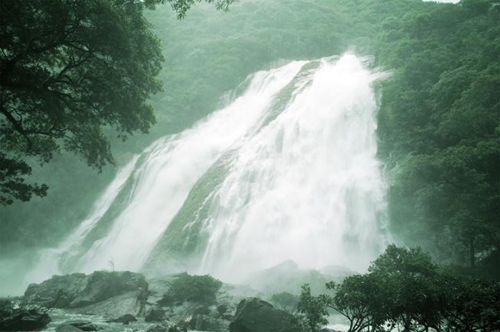 雨の屋久島旅1:滝を見てきました(千尋の滝・竜神の滝・大川の滝)