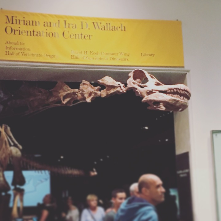[NY2017]Chelseaで朝の散歩&アメリカ自然史博物館へ