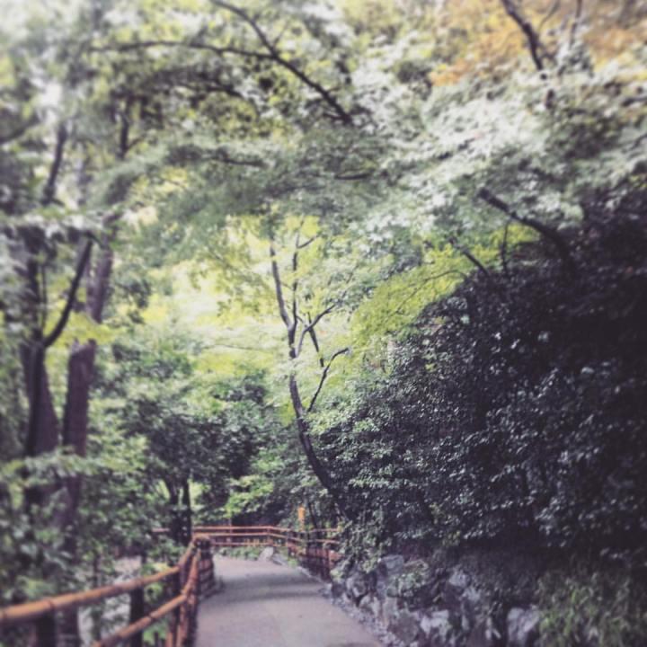 秋の東京旅7:お庭が美しい満足宿「ホテル椿山荘東京」のお一人様宿泊